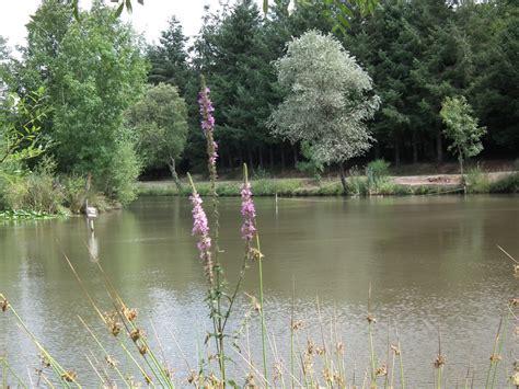 ouverture bureau de tabac pêche dans l 39 étang de la foucaudière oree d 39 anjou office