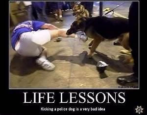 Shangrala39s Police Dogs
