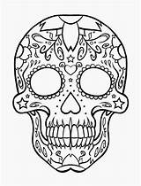 Coloring Skull Crossbones Popular Printable sketch template