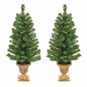 Set, Of, 2, Outdoor, Porch, Christmas, Trees, Battery, Powered, With, Warm, White, Led, U0026, 39, S
