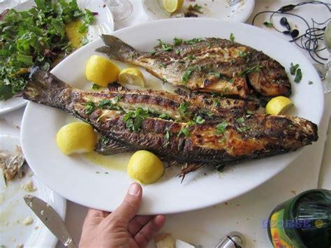 fish cuisine fish cuisine food treats