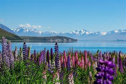 Zealand Places Country