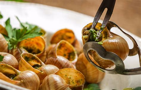cuisine escargot food you to try at least once ryanair