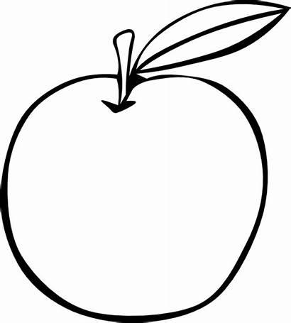 Apple Coloring Fruit Pages Outline Clipart Fruits