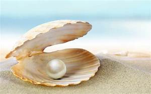 All you need to know about PEARLS! | Rainbow Minerals