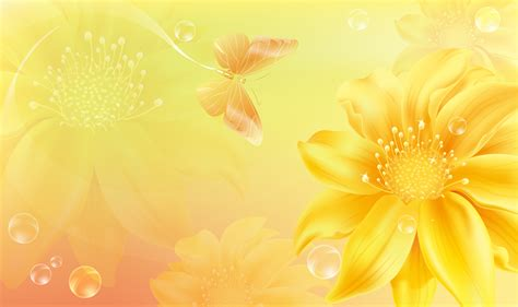 yellow sunflowers poster background butterfly food yellow