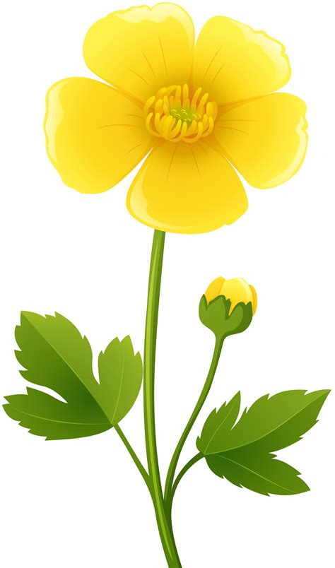 yellow flower transparent png clip art image gallery yopriceville
