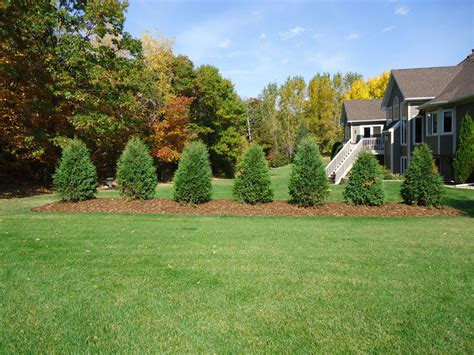 berm landscaping pictures berm home joy studio design gallery best design