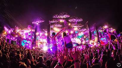 Tomorrowland Edm Festival Party Electro Poisoning Water
