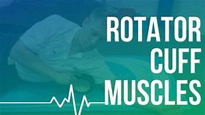 Rotator Cuff Muscles - Functional Roller Techniques