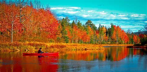 fall foliage maine google search maine bar harbor