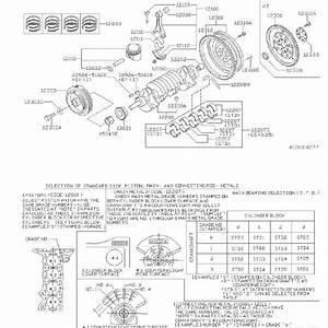 Nissan Sentra Engine Piston  Grade  Illustration