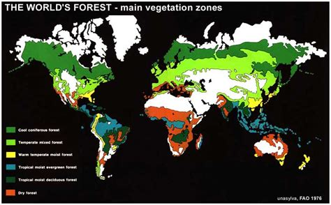 Forest Types of the World Forestrypedia