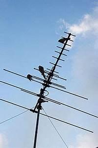 Fil D Antenne Tv : fjernsyn wikipedia ~ Melissatoandfro.com Idées de Décoration