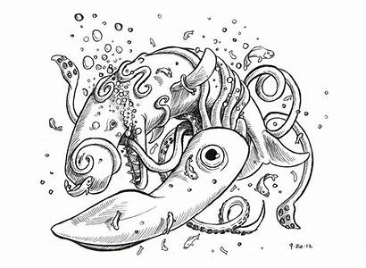 Squid Whale Vs Filed Ink Under