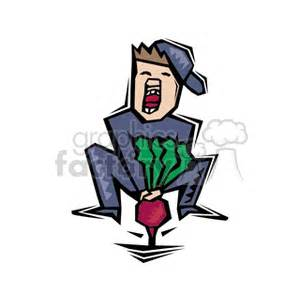 gardener struggling  pull beet  ground clipart