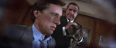 Looking Back Stephen King's Cat's Eye (1985) Mauiwatch