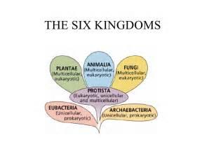 Six Kingdom Classification System