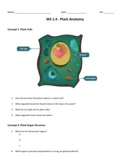 grade life science chapter  cells tissues organ