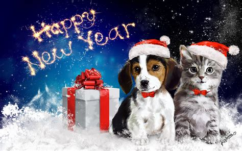 Happy Wallpaper Cats And Dogs by Happy New Year New Year Animals Cat Present