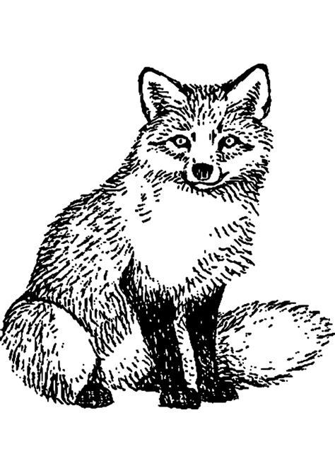 dessin 192 imprimer prefix renard assis