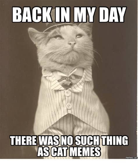 Such Meme - 25 best memes about business cat meme red dot business cat meme red dot memes