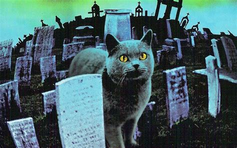 Revisiting The Film Of Stephen King's Pet Sematary Den