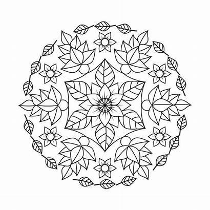 Mandala Colorear Flores Hojas Flower Petit Adultos