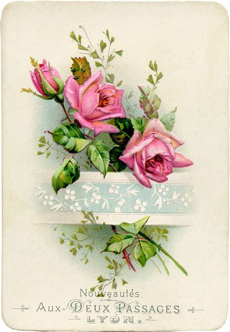 Vintage French Roses Image!  The Graphics Fairy