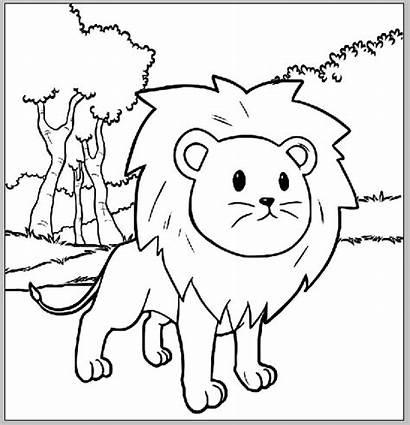 Lion Coloring Cartoon Sheet Mitraland