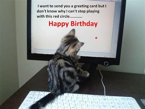 birthday greeting  kitty  happy birthday ecards