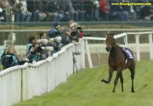 BREEDER CUP HORSE BREAKS LEG - CAUTION GRAPHIC