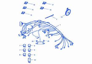 Triumph Tiger 1050 2003 Wiring Electrical Circuit Wiring Diagram