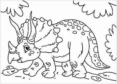 Coloring Dinosaurs Pages Children Triceratops Dinosaur Printable