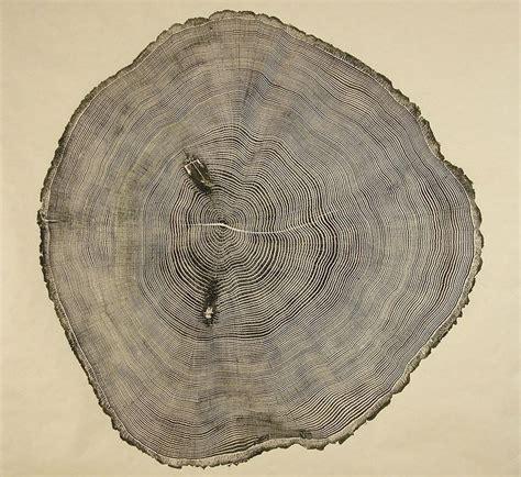 tree ring woodcuts bryan nash gill archocom