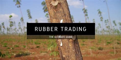 Rubber: Learn How To Trade It at Commodity.com