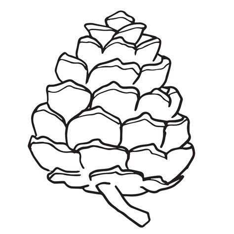 The Chew Templates Pine Cones Animals by Pine Cone Clipart Worksheets