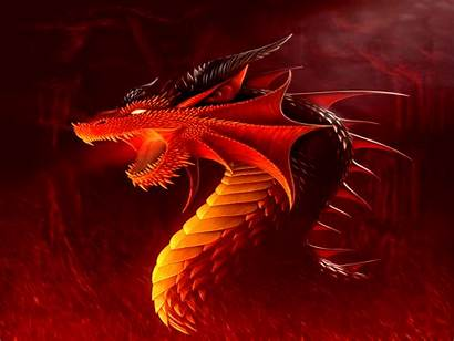 Dragon Wallpapers Desktop Backgrounds Fantasy