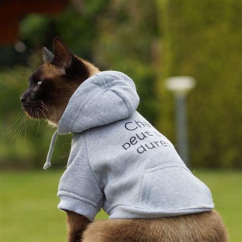 bain de siege sweat pour et chaton en coton gris vêtements pour