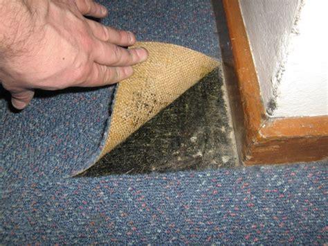 asbestos products asbestos surveys testing