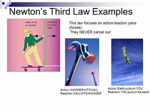 Unit 3: Newton's Laws Chapter 4 & ppt video online download