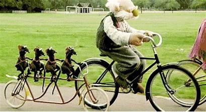 Bike Riding Around Ireland Things Zazz Ride