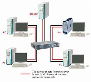 Computer Tips  Network Hubs And Switches  Hubs And Switches Function As A Common Connection