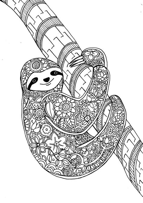 flower sloth animal dreamers coloring book zentangles