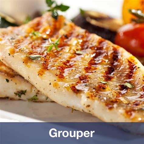 grouper fishin spp