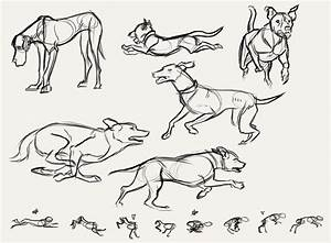 Dog Walking Animation Reference