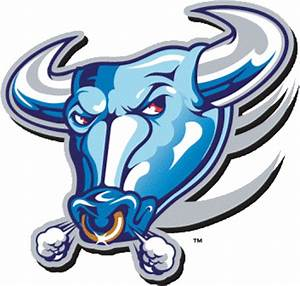 Blue Bulls Cool Places Pinterest Rugby and Rugby images