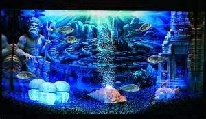 Atlantis - World, Dekoration für Aquarien – HYDOR