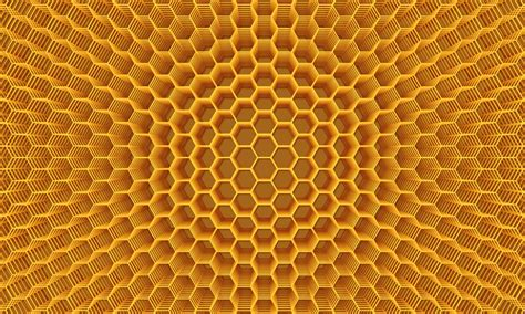 cell abstraction honey background figures volume