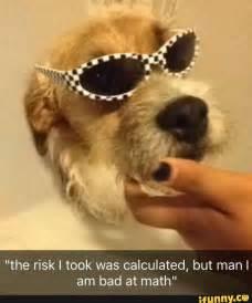 Doggo Meme